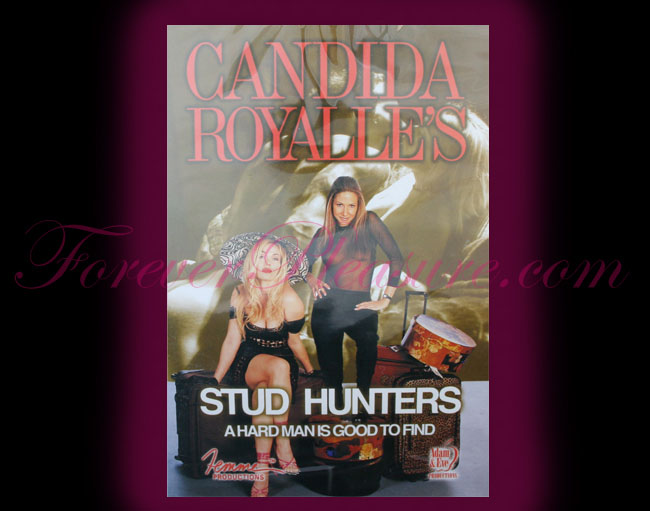 Candida Royalle's 'Stud Hunters'